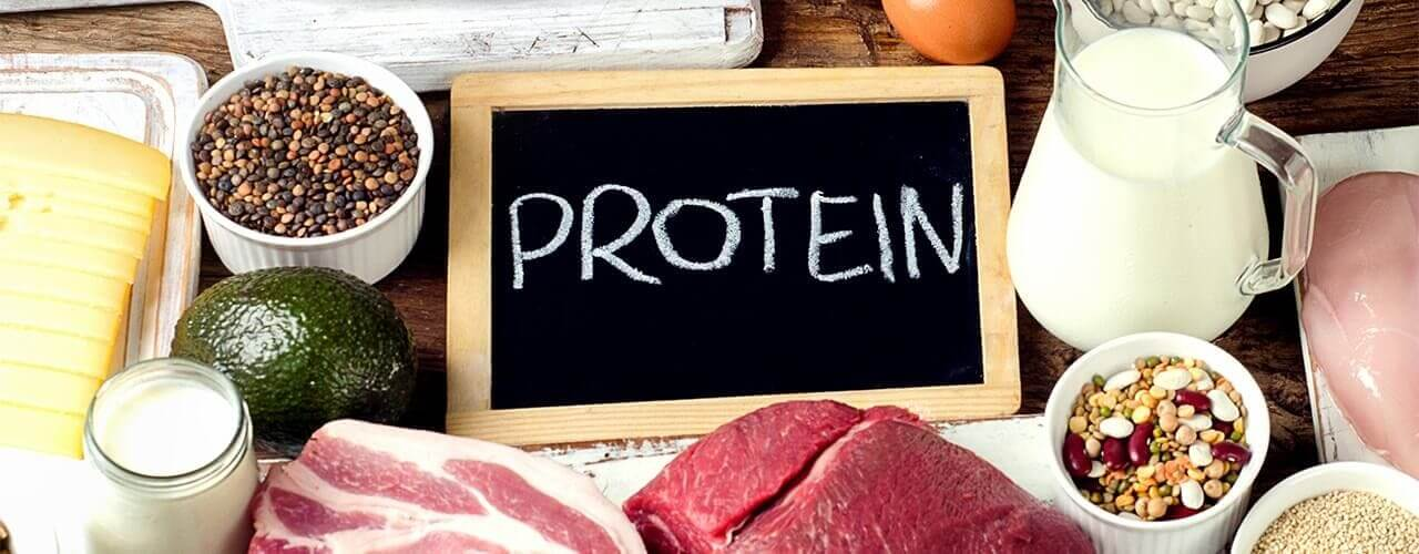 High-Quality Protein